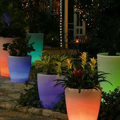 Glowing flower pots