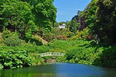 Trebah Garden, Falmouth, Cornwall