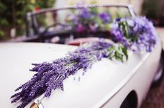 Lavender On a Wedding Car...what a lovely idea!