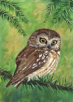 Aceo cute little owl reproduction of original painting in acrylic #Realism