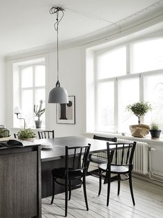 Black dining table extension to kitchen island, black dining chairs, pale lime-washed floorboards, white walls, high ceilings, decorative cornices, matt grey pendant light, plants on window sills