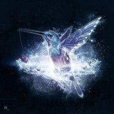 """Hummingbird Love"" by Cameron Gray"