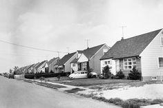 60s american suburbia - Google Search