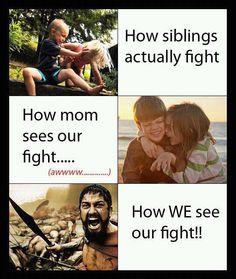When siblings fight…