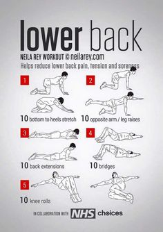 Back Workout / Helps reduce lower back pain, tension, stiffness & soreness.Lower Back Workout / Helps reduce lower back pain, tension, stiffness & soreness. Fitness Workouts, Yoga Fitness, At Home Workouts, Fitness Tips, Health Fitness, Hero Workouts, Killer Ab Workouts, Fitness Foods, Easy Fitness