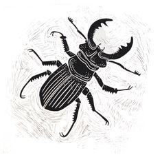 Stag Beetle   Ben Dickson Linocuts   Original Portrait Art