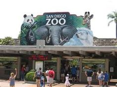 San Diego Zoo!!!! I love it there, can't wait to take the kiddo there someday.
