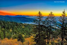 Beautiful sunrise, one of the great Fall photographs in 2015. By Gwen Cross. Taken from Clingmans Dome, late November.