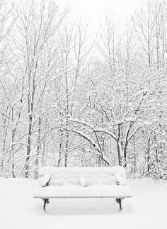 Love this snow picture and am missing have a real winter this year.