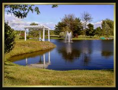 Our pond makes a perfect backdrop for photographs, ceremonies, and even casual picnics. Birch Hill Events #NY #Wedding #Albany