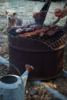 Barbeque, Dog by rpsteledata