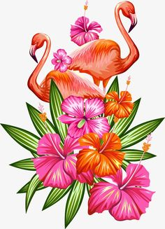 Tropical Flower Drawing No Background. Tropical Flower Drawing No Background. Floral Clipart No Background Tropical Flowers, Tropical Plants, Exotic Flowers, Purple Flowers, Design Tropical, Tropical Art, Flamingo Painting, Flamingo Art, Paradis Tropical