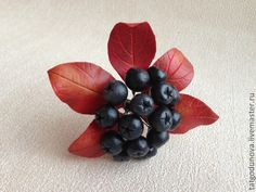 """Купить Брошь """"Осень"""". Брошь из глины с ягодами. - чёрный, бордовый, красный, желтый, брошь с ягодами"""