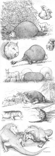 paleoillustration: More information: dino sketches II, Miocene fauna sketches, sketch dump sketch dump oviraptorids.paleoillustration: More information: dino sketches II, Miocene fauna sketches, sketch dump sketch dump oviraptorids. Dinosaur Sketch, Extinct Animals, Prehistoric Creatures, Creature Feature, Minions, Animals Images, Fauna, Mammals, Sketches