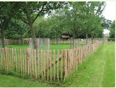 idea to graze orchard - protect trees Farm Gardens, Outdoor Gardens, Large Backyard Landscaping, Country Fences, Farm Plans, Garden Fencing, Farm Life, Garden Inspiration, Outdoor Living
