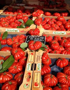 Tomatoes, market in Nice, France | Roz Crowley...Now THIS is Garden Treasure!