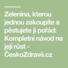 Zelenina, kterou jednou zakoupíte a pěstujete ji pořád: Kompletní návod na její růst - ČeskoZdravě.cz