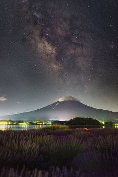 https://flic.kr/p/JpCFd3 | Starlit Lavenders | It was a nice, starry night the day before yesterday. Actually it was kind of rare as we were still in the rainy season, so I couldn't miss the chance.I drove to the Ooisihi park located along the shore of Lake Kawaguchi to capture this image. Nikon D800E + SIGMA 35mm f/1.4 ART