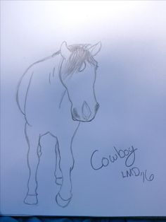"""Cowboy"" Drawn by Lauren Denard 6/26/16 requested by @JadaAndZippo hope you like it!"