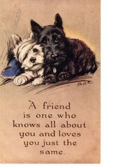 Duncan likes this poster kept in the entry, as anyone who sees it will automatically look for a treat for those two sweet lil ones. Then Duncan & Mac look at me and smirk.....
