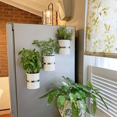 Magnetic self-watering planter. Magnetic self-watering planter. Self Watering Plants, Fridge Decor, Plastic Plant Pots, Decoration Plante, Diy On A Budget, Plant Decor, Flower Pots, Diy Home Decor, Shelving Systems