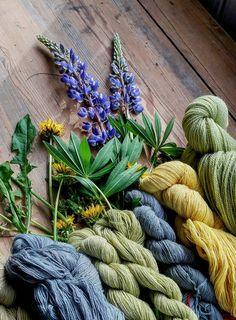 Wool Shop, Cactus Plants, Lana, Weaving, Natural, Prints, Painting, Color, Natural Materials