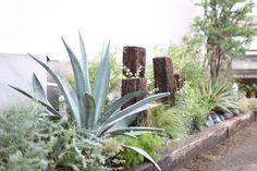 Rooftop Garden, Balcony Garden, Terrace, Landscape Design, Garden Design, House Design, Dry Garden, Home And Garden, Manado
