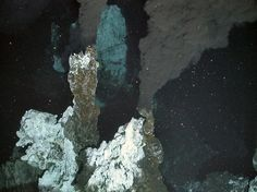 Gallery: Unique Life at Antarctic Deep-Sea Vents   First Antarctic Hydrothermal Vents   Barnacles, Yeti Crabs, Crinoids, Octopus & Anemones