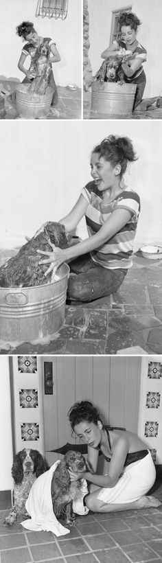 17-Year-Old Elizabeth Taylor Giving A Bath To Her Cocker Spaniel Amy In 1949