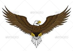 eagle draw - Buscar con Google