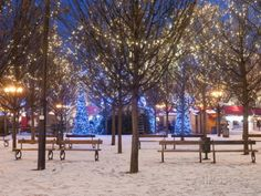 Old Town Square's Park at Twilight, Stare Mesto, Prague, Czech Republic