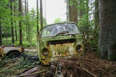 Lost in the Pine Cones (Purge of Public) Tags: bus abandoned graveyard car pine vw lost woods decay autos cones verlassen urbex verfallen abbandonato autofriedhof verlaten abandonée