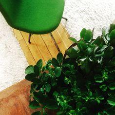 Green power #Spoinq #chair #lavilladeco #green #decoration #shop #interiors #lavilladeco.com