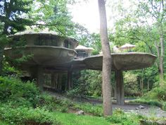 Mushroom house Rochester, NY Took Alexus here on last visit!! My favorite place to go when I was a kid~!