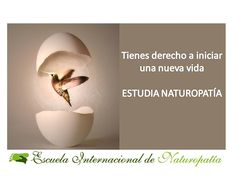 Un giro   Escuela Internacional Naturopatia M.R.A.