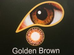Golden Brown - 1 month wear contact lenses with free solution and free lense case has been published at http://www.discounted-beauty-products.com/2012/05/07/golden-brown-1-month-wear-contact-lenses-with-free-solution-and-free-lense-case/