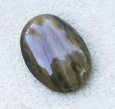 Petrified Wood Cabochon  Beautiful Brown & Tan by JewelryArtistry