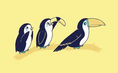 cool funny graphic design chicquero tucan penguin