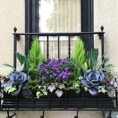 Idées de déco fleurs balcon
