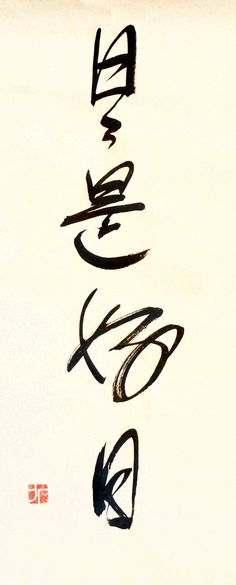 "Nichi Nichi Kore Ko Nichi — ""Everyday is a good day"". A Zen Buddhist proverb. Kanji Japanese, Japanese Words, Japanese Phrases, Japanese Sayings, Calligraphy Letters Alphabet, Calligraphy Art, Kanji Tattoo, Tattoo Lettering Styles, Tattoo 2017"