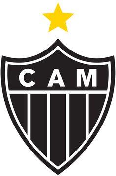 CAMpeao Libertadores 2013