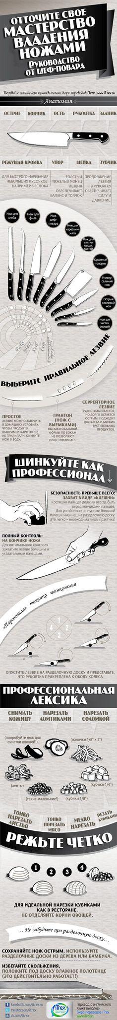 Любите готовить? Тогда это руководство по выбору ножей и работе с ними вам точно пригодится :)   Подробнее: http://itrex.ru/news/masterstvo-vladeniya-nozhami#ixzz3bYUZLjF6