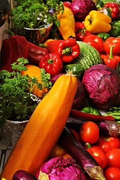 Rainbow Vegetables - Lots of fresh food for everyone...when God's Kingdom rules this earth.