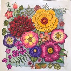 Coloring Book Art, Coloring Tips, Adult Coloring, Coloring Pages, Joanna Basford, Floral Doodle, Johanna Basford Coloring Book, Color Pencil Art, Doodles
