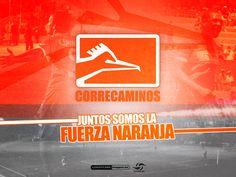 ¡Fuerza Naranja! • Correcaminos • #LigraficaMX