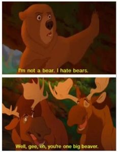 Brother bear for the win