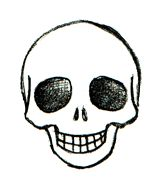 http://www.art-is-fun.com/image-files/learn-to-draw-a-skull-14.gif