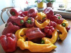 Zeleninu pěstuje v samozavlažovacích truhlících. Úrodu má neskutečnou - iDNES.cz Pesto, Stuffed Peppers, Vegetables, Food, Stuffed Pepper, Essen, Vegetable Recipes, Meals, Yemek