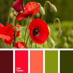 Color Palette #2739