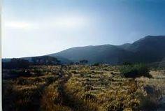 ... suelos de la estepa se deben a los contenidos de óxidos de hierro, que si son elevados les dan una coloración rojiza. En general son suelos duros porque ...